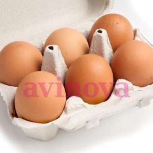 Huevo rubio XXL